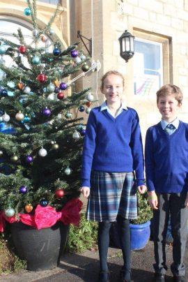 Christmas tree pic 2